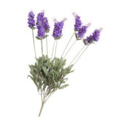 Βιολογικό αιθέριο έλαιο λεβάντα – Vessel