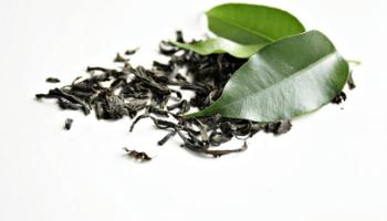θεραπευτικές ιδιότητες του tea tree